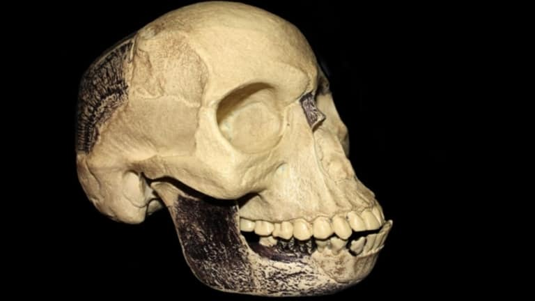 "November 21, 1953: ""Piltdown Man"" Discovered To Be A Hoax"